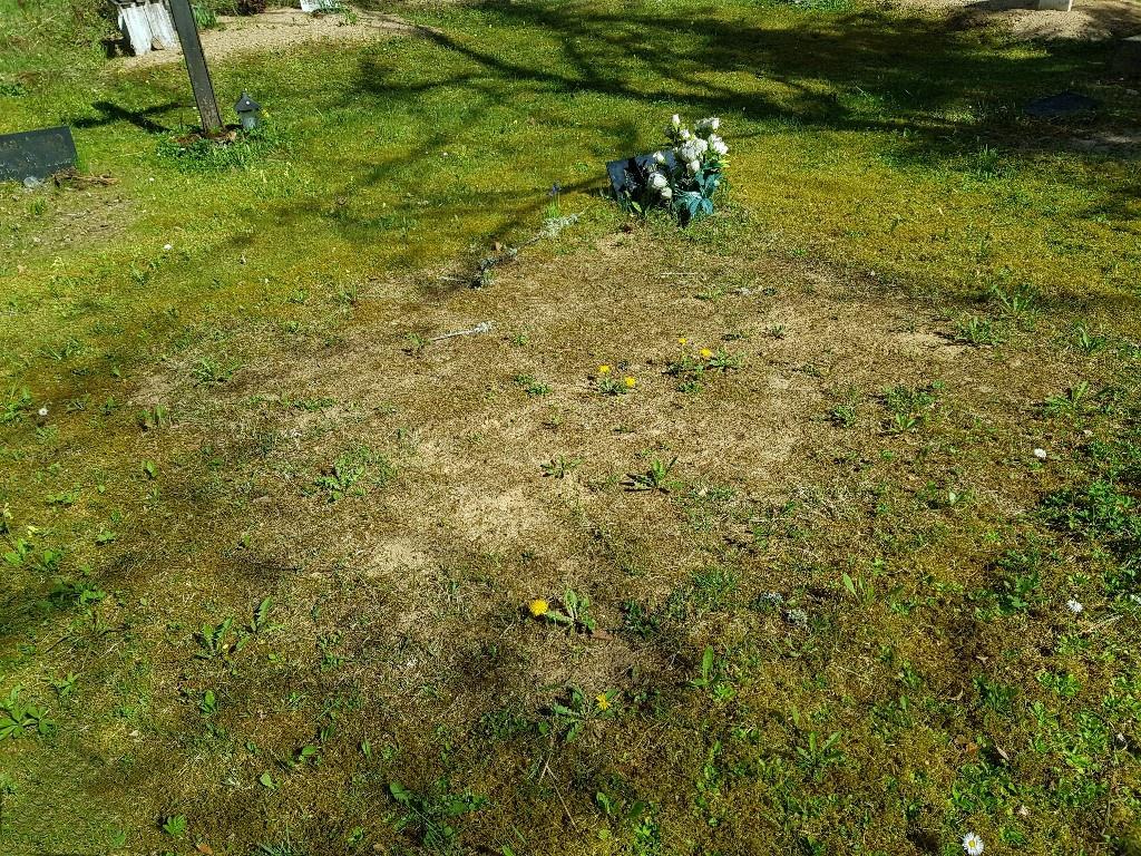 Renoveerimine Lelle kalmistul ENNE foto