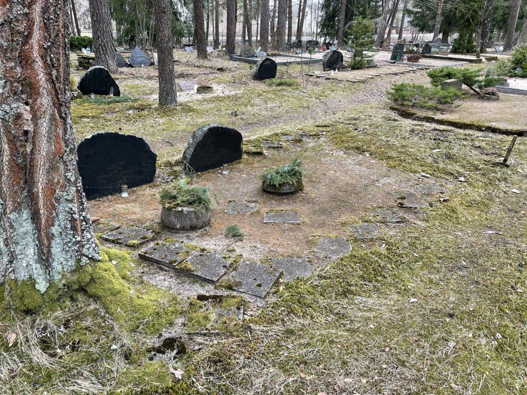 karjaküla kalmistu_enne foto