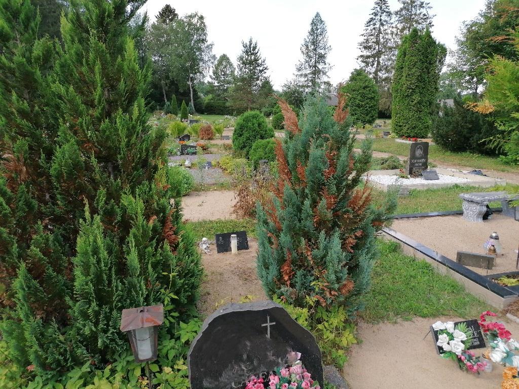 Renoveerimine Tamsalu kalmistul ENNE